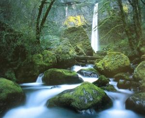 Gentle Waterful